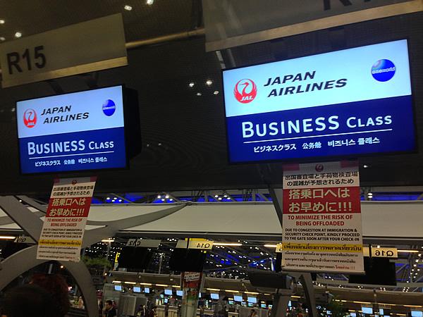 JAL B787 画像